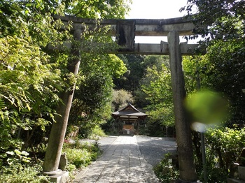 33-大豊神社二の鳥居PA060030.JPG